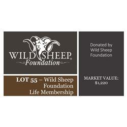 Wild Sheep Foundation Life Membership