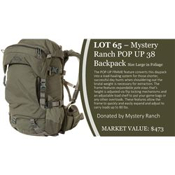 Mystery Ranch Pop Up 38 Backpack in Foliage ~ Size Large