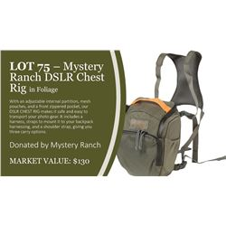 Myster Ranch DSLR Chest Rig in Foliage