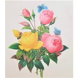 After Pierre-Jospeh Redoute, Floral Print, #127 Rose jaune et de Rose du Bengale (Rose)