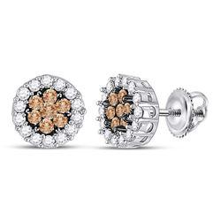 14kt White Gold Round Brown Diamond Flower Cluster Screwback Earrings 3/4 Cttw