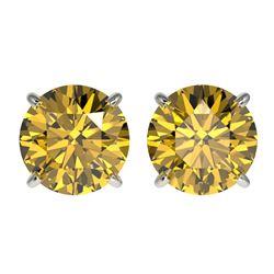 2.57 ctw Certified Intense Yellow Diamond Stud Earrings 10k White Gold