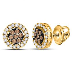 10kt Yellow Gold Womens Brown Diamond Flower Cluster Screwback Stud Earrings 1/4 Cttw