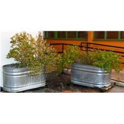 Feed Troth Planters From Outside Threadgill's (4)