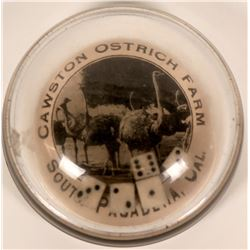 Cawston Ostrich Farm Vintage Glass Advertising Dice Game / Paperweight  (120055)