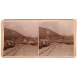 Stereoview Photo of Tulare, California  (118005)