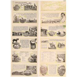 Spokane Inter-State Fair 1911 schedule flyer  (120217)