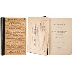 Holbrook's Newark Directory, 1875  (82855)