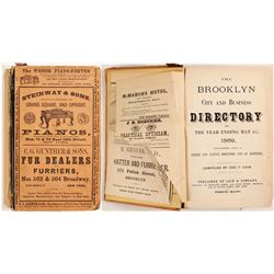 The Brooklyn City and Business Directory, 1869  (82861)