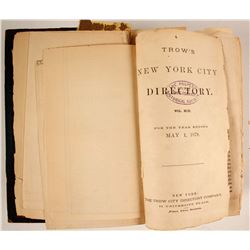 Trow's New York City Directory for 1878-1879  (82943)