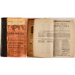 New York City Directory 1879–'80  (82941)