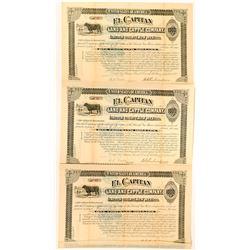 El Capitan Lincoln County Stock Certificates  (117181)