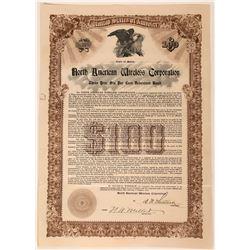 North American Wireless Corporation Bond Certificate, 1910  (111835)