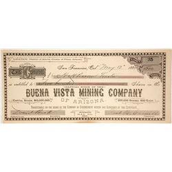 Buena Vista Mining Company of Arizona Stock Certificate  (59683)