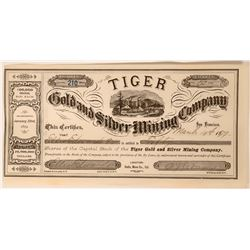 Tiger Gold and Silver Mining Co. Stock  (117549)