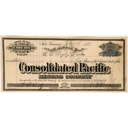 Consolidated Pacific Mining Company Stock  - Bodie, California  (119392)