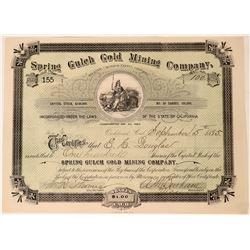 Spring Gulch Gold Mining Stock, San Andreas, Cal. 1895  (111805)