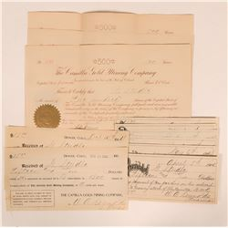 Camilla Gold Mining Company Stock Archive (9 items)  (120036)