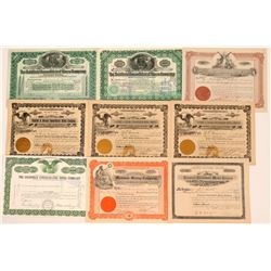 Misc. Nevada Mining Stocks Includes Rare Early Date Goldfield Consolidated Mines, 1908 (9)  (111650)