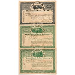 The Gold Creek, Nevada Townsite Co. Stock Certificates  (107318)