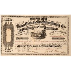 Buena Vista Gold & Silver Mining Stock, Prince Royal District, Humboldt Co. N.T., 1863  (111784)