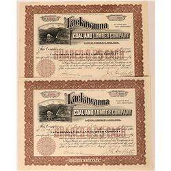 Lackawanna Coal & Lumber Stocks, 1914 (2)  (111818)