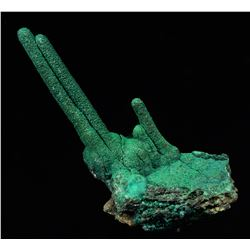 Malachite from Mashanba West Mine, Democratic Republic of Congo  (53069)