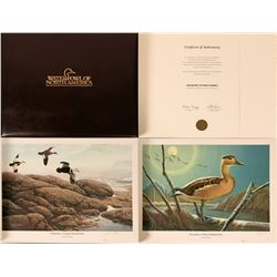 Waterfowl of North America by Irving for Ducks Unlimited  (112779)