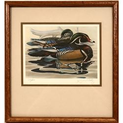 Wood Ducks Giclee Print  (116203)