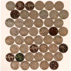 Buffalo Indian Head Nickels 1915-1916  (117648)