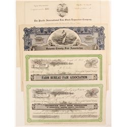Fair and Exposition Stock Certificates  (82730)