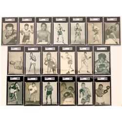 A Whole Stable of Exhibit Boxer Cards  (119269)
