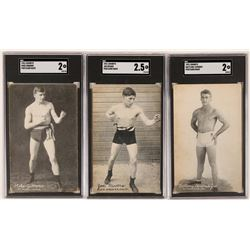 Exhibits Boxer Postcard Trio  (119265)