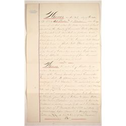 Rhodes Salt Marsh (Borax) Legal Document, 1884  (89867)