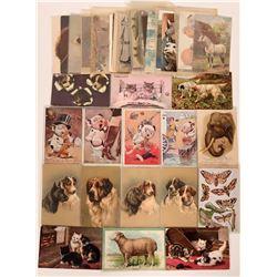 Animal Postcards Group (40)  (111693)