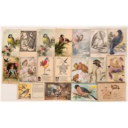 Lot of Bird Postcards Includes Five from Tuck (18)  (111676)
