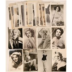 Hollywood Pinup Girls Group of Postcards (28)  (111720)