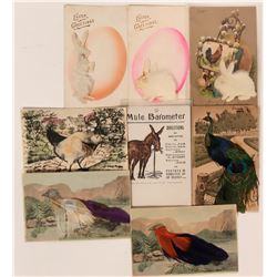 Odd lot of Birds and Rabbits Postcards with Raised Fur and Feathers (8)  (111681)