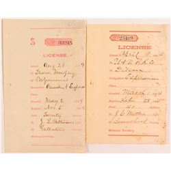 License Receipts for Expressmen Occupation, Montana 1884  (50631)