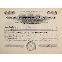 Cieneguita Consolidated Mines Co. Stock Cert.  (76246)