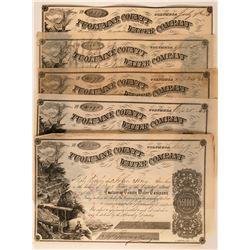 Five Tuolumne County Water Company Stock Certificates Columbia California  (117382)