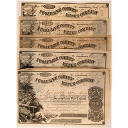 Five Tuolumne County Water Company Stock Certificates Columbia California  (117382)