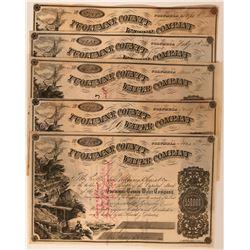 Five Tuolumne County Water Company Stock Certificates Columbia California  (117384)
