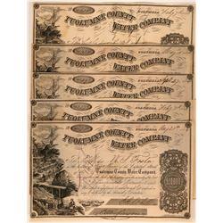 Tuolumne County Water Company Columbia California Stock Certificates  (117381)