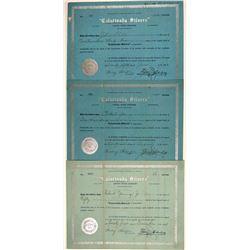 Calarivada Silvers Stock Certificates  (106703)