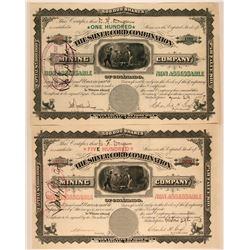 Two Silver Cord Combination Colorado Stock Certificates  (117379)