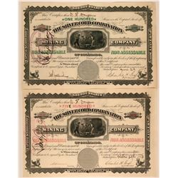 Two Silver Cord Combination Colorado Stock Certificates  (117379)
