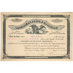American Placer Company Stock Certificate  (107517)