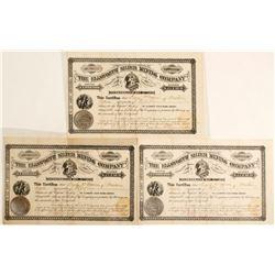 Ellsworth Silver Mining Company Stock Certificates  (60253)
