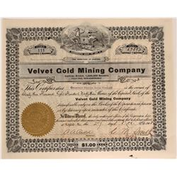 Velvet Gold Mining Co. Stock, Goldfield, Nevada  (110049)